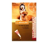 Bayer Advocate For External Parasites For Large Dog - 10 to 25 Kg
