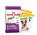 Royal Canin Giant Junior - 15 Kg with Treats