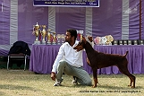amritsar-kennel-club_120.jpg