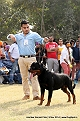 amritsar-kennel-club_156.jpg