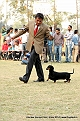 amritsar-kennel-club_20.jpg