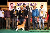 amritsar-kennel-club_212.jpg