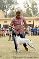 amritsar-kennel-club_92.jpg