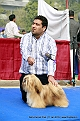 delhi-kennel-club1421136768.jpg