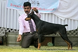 jabalpur-dog-show-2-nov-2014_229.jpg