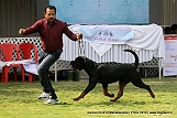jabalpur-dog-show-2-nov-2014_274.jpg