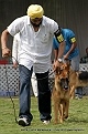 jabalpur-dog-show-2-nov-2014_323.jpg