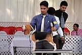 jabalpur-dog-show-2-nov-2014_77.jpg