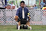 jabalpur-dog-show-2-nov-2014_89.jpg